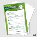 Heat-Transfer-Papers-A3-Size-3491579678179.jpg