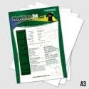Heat-Transfer-Papers-A3-Size-3551579678728.jpg